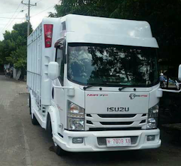 ISUZU NMR 71 T 125PS VARIASI