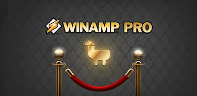 Winamp Pro v1.4.13 apk download release