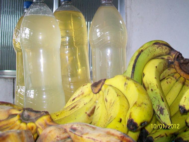 Banana da Agroprata