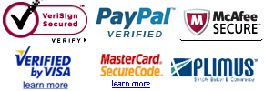 Secured Website Payment