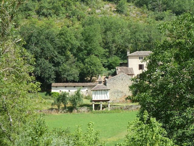 [CR] Bruniquel (82), Gorges de l'Aveyron le 09 juillet 2015. P1070552