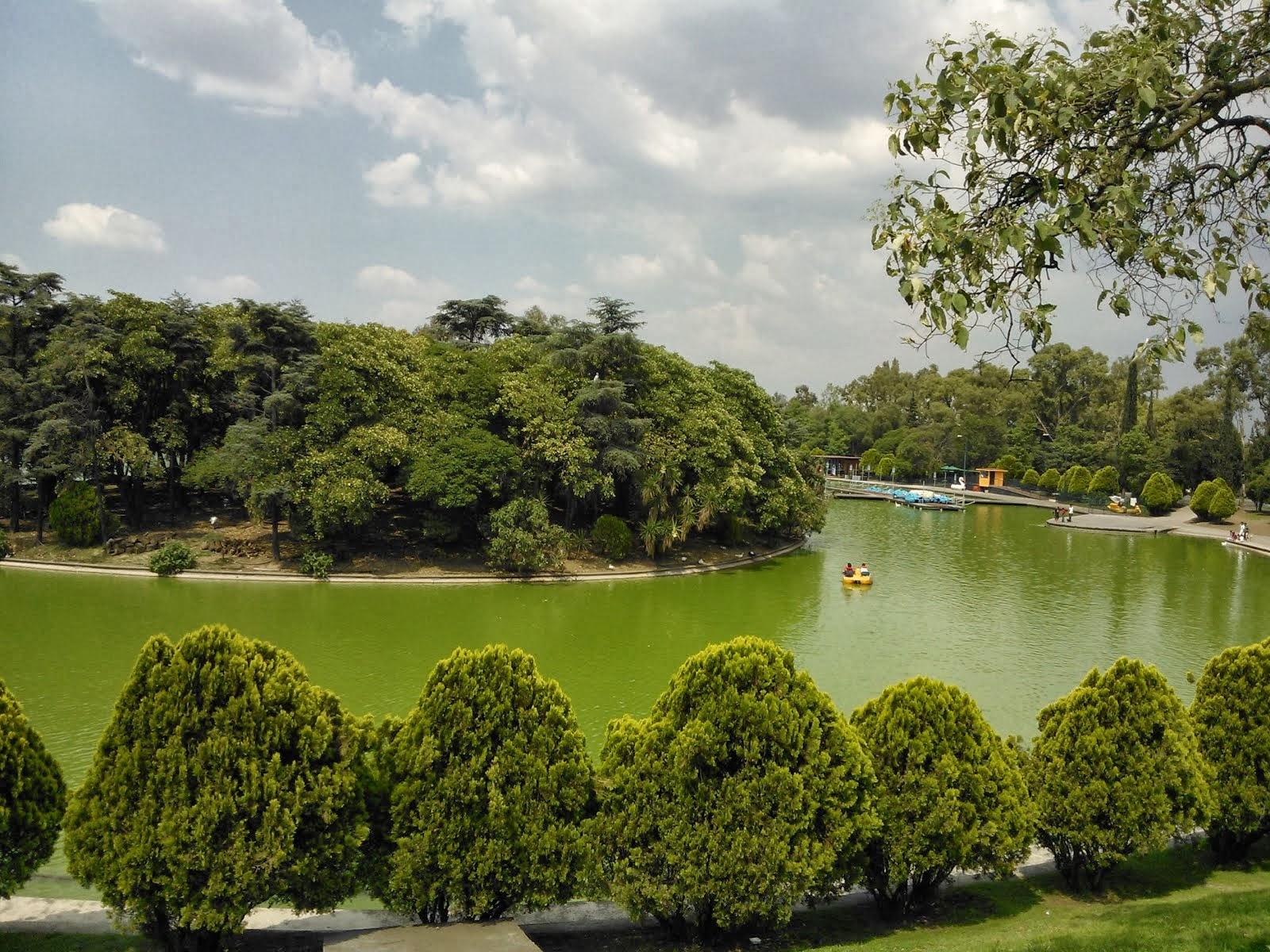En el lago de Chapultepec