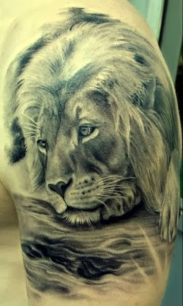 Best Animal Tattoos, Best Lion Tattoos (Gallery 3)