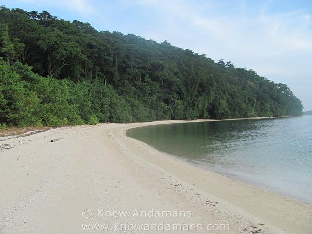 Guitar Island beach