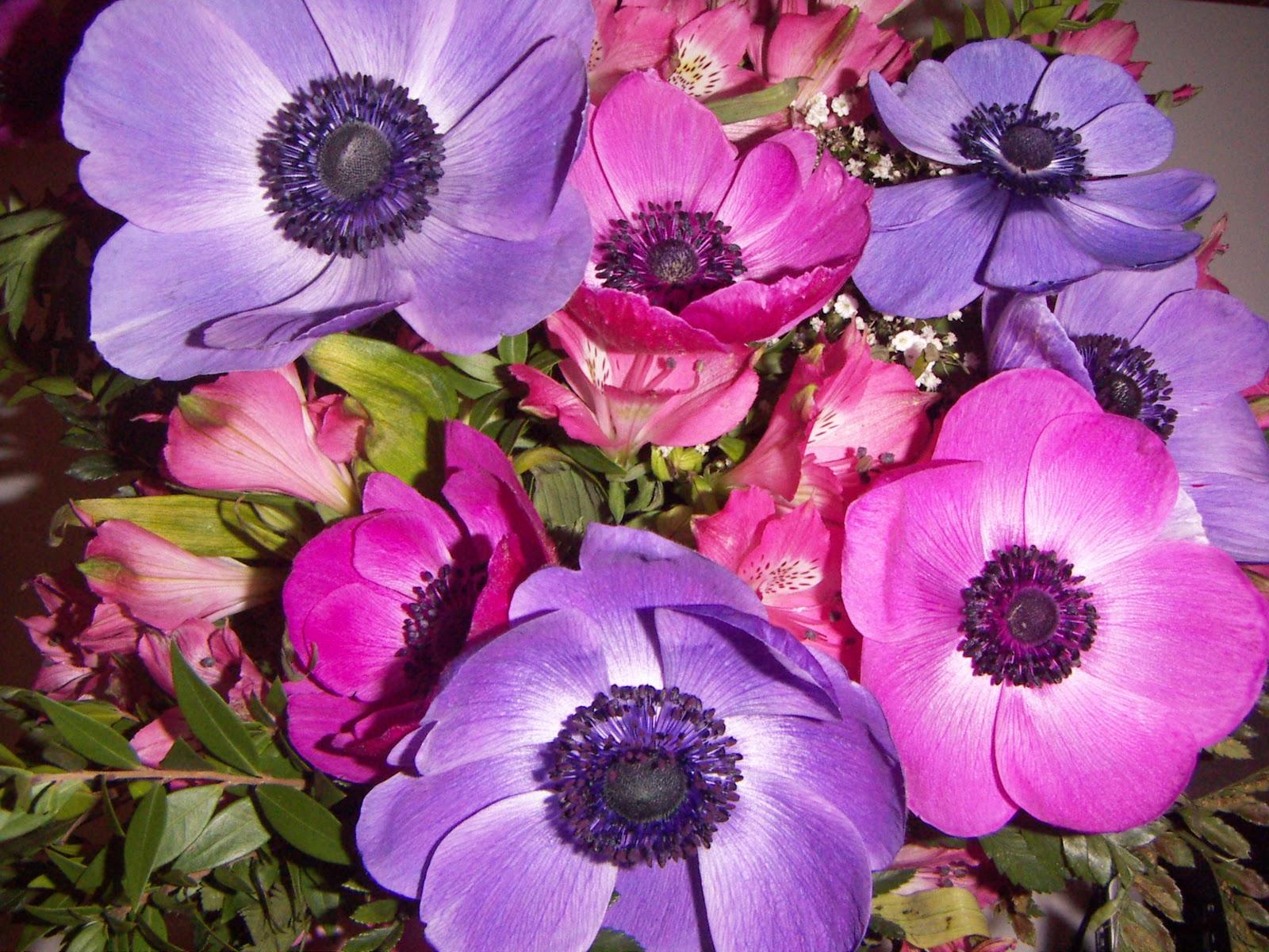 Life with me fiori di compleanno for Progetta il mio mazzo