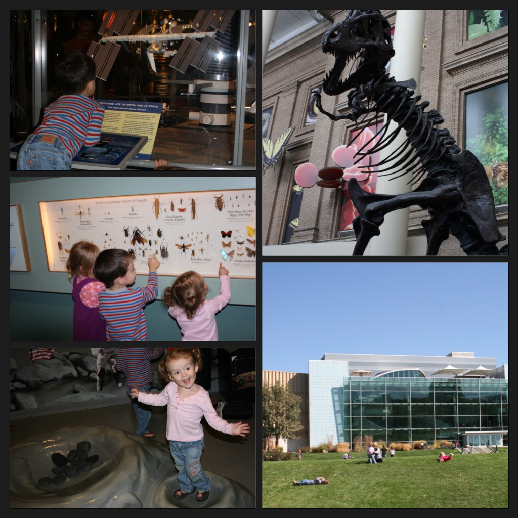 Denver Zoo Free Days: Savvy Style, Mindful Home: Free Stuff