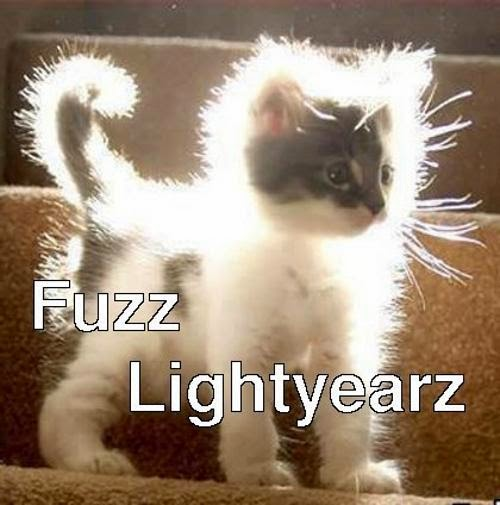 fuzz lightyear cat meme