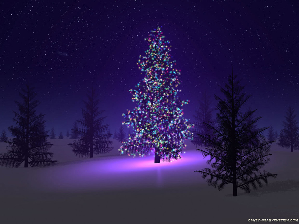 http://3.bp.blogspot.com/-74g-48XV1QY/TqWim0GxiYI/AAAAAAAAAMQ/_MR7g5vNDCU/s1600/beautiful-christmas-tree.jpg