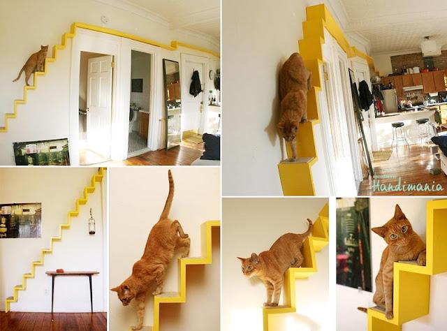 escalera gato