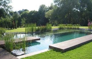 Arredamenti moderni idee per piscine naturali per il - Cascate per piscine ...