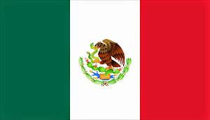 2.- AADDIM - NACIONAL MÉXICO - MIEMBRO ASOCIADO CIDI - PRESIDENCIA NORTEAMÉRICA