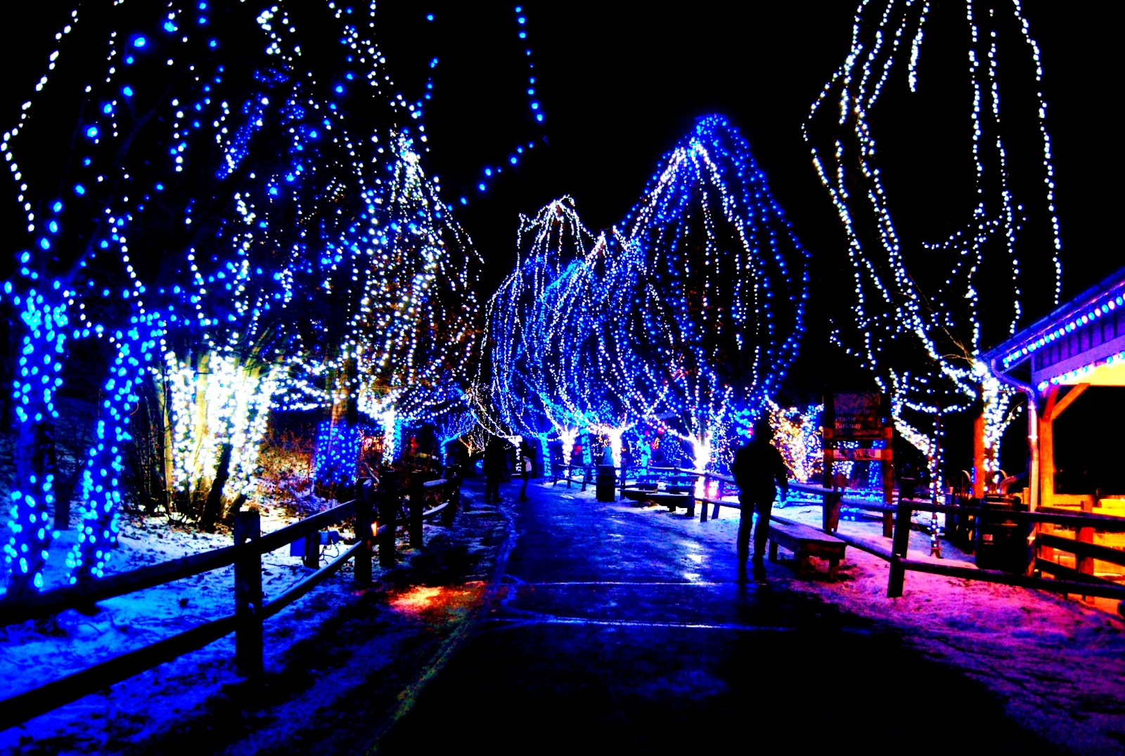 Animated christmas lights for desktop best hd wallpapers