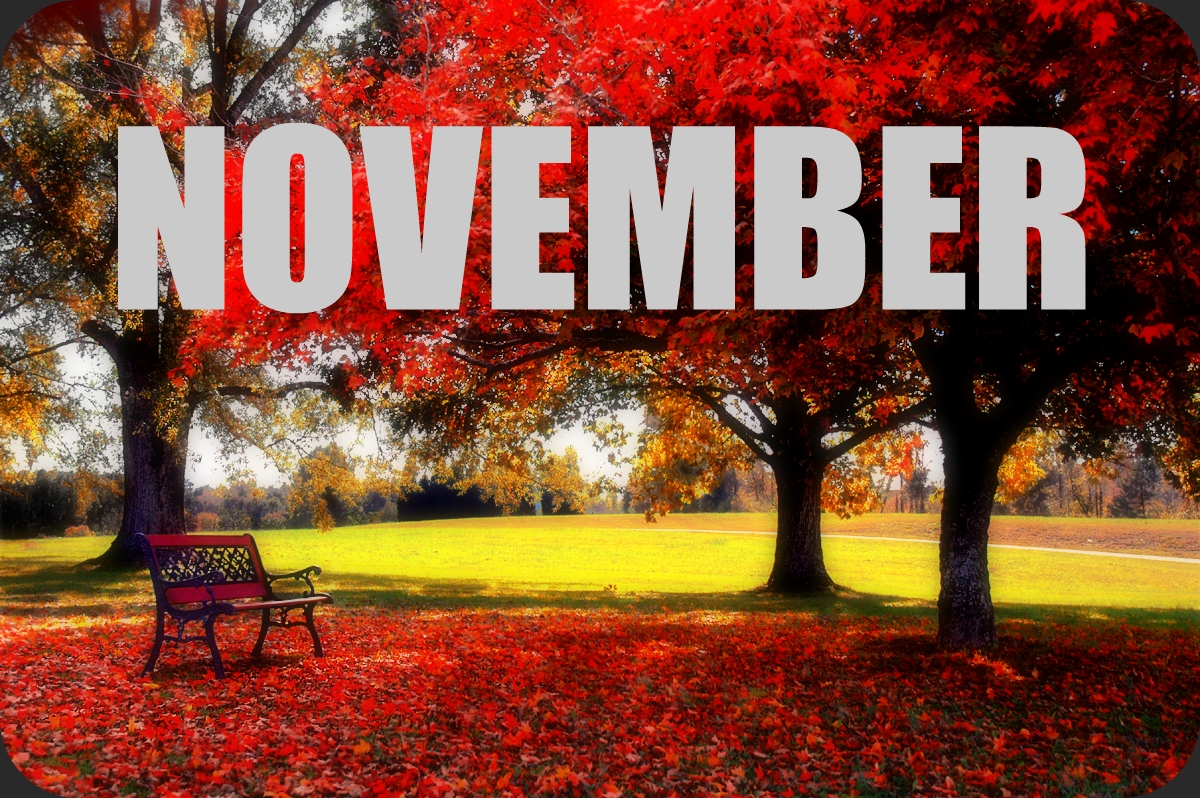 Must Read Faster: November Goals and Happenings