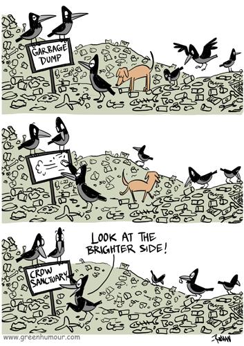 Green Humour: Crow Sanctuary
