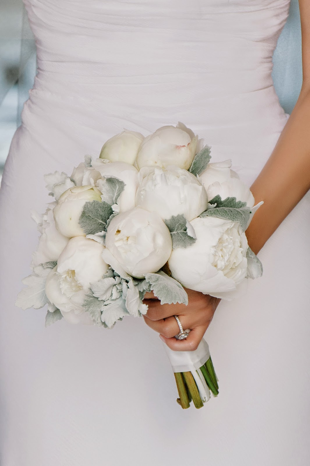 white peony and dusty miller bouquet by Myrtie Blue