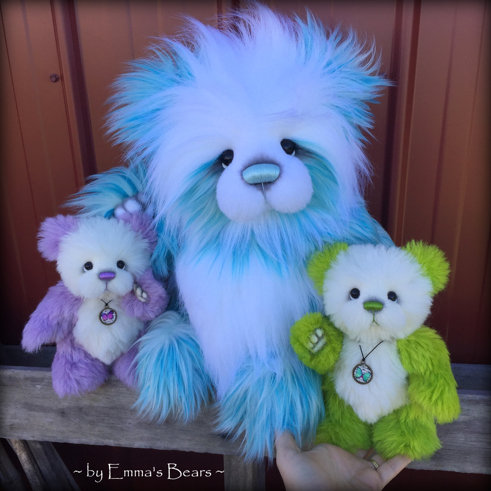 The Inner World of Emma's Bears