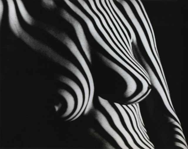 Fernand Fonssagrives Photography, Suzette, 1954-58