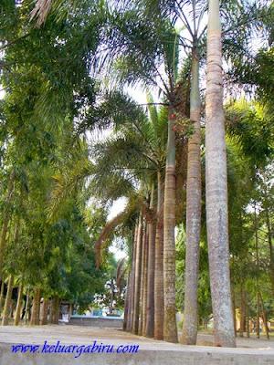 Taman Wisata Bendung Lodoyo