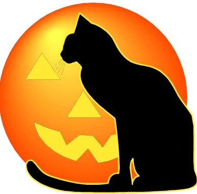 iisalmen ammattiopisto halloween kuvahaku