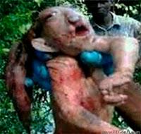 duende trol cazado en namibia africa
