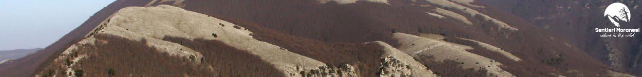 L'anello di Timpone della Capanna dalla cresta Ovest