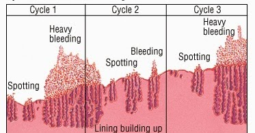 How long can menstruation delay