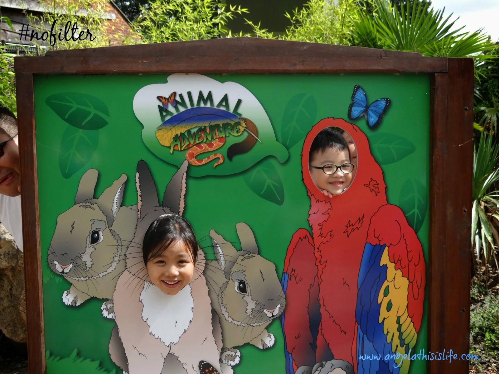 Longleat Safari Park, Longleat House, Longleat Zoo