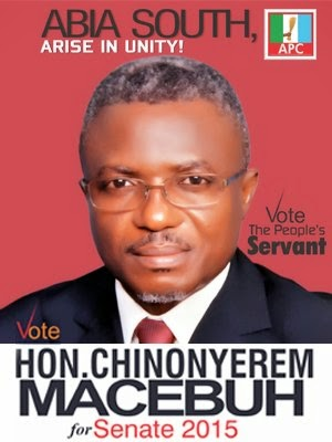 Hon Chinonyerem Macebuh for Senate, Abia South, 2015
