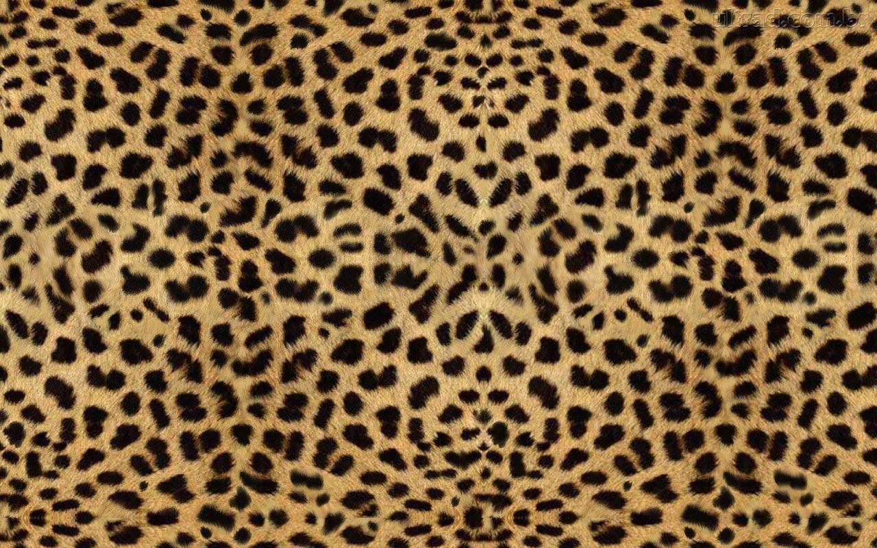 Cartown Blog Brasil Textura De Oncinha Para Scion Xb