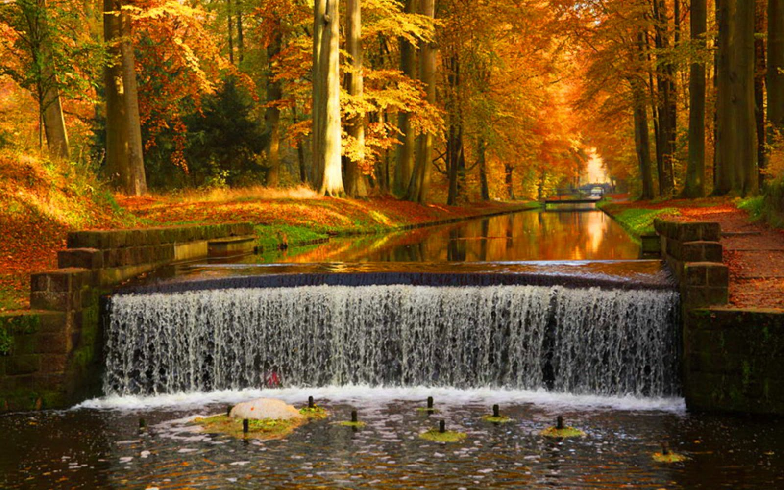 Autumn Waterfalls Hd Desktop Wallpaper