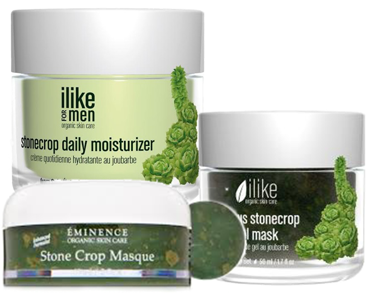 Ilike Stone Crop Moisturizer and Masque