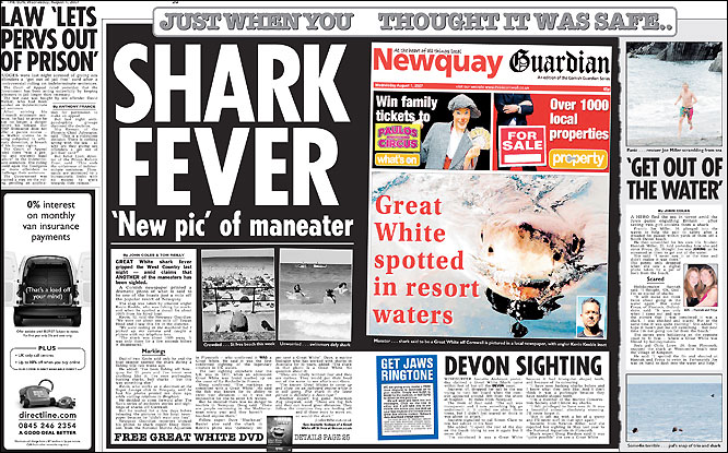 Sdx oceanic white tip uk sighting a response for Farcical sentence examples