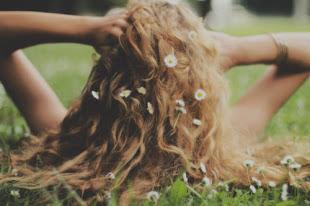 use daisies