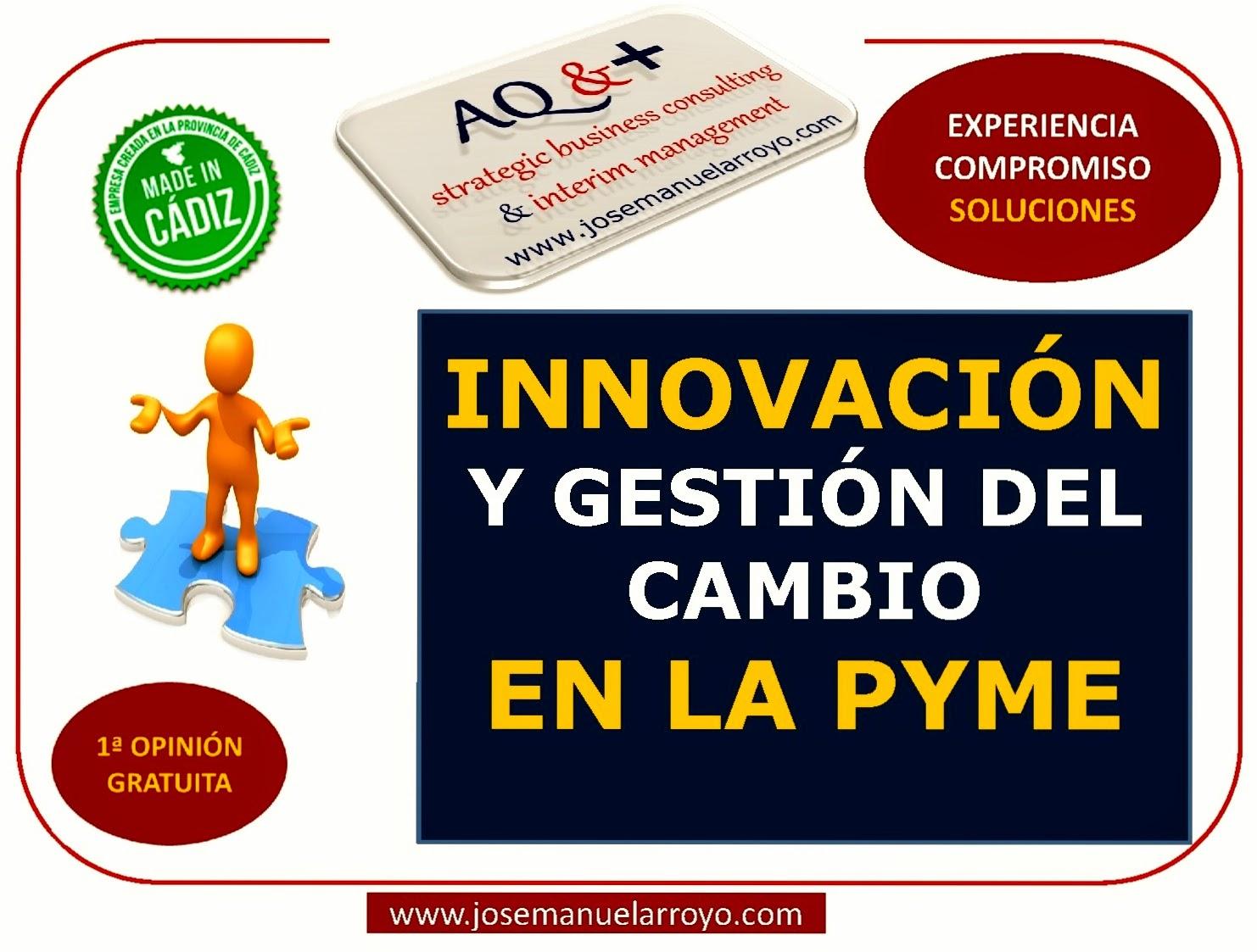Innovación y Gestión del Cambio en la PYME