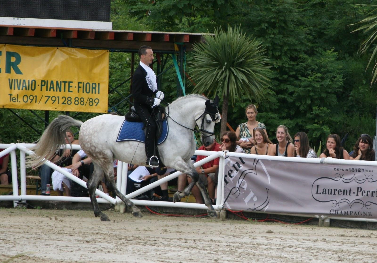 Solo circo x sempre maggio 2010 for Quanto costa mantenere un cavallo