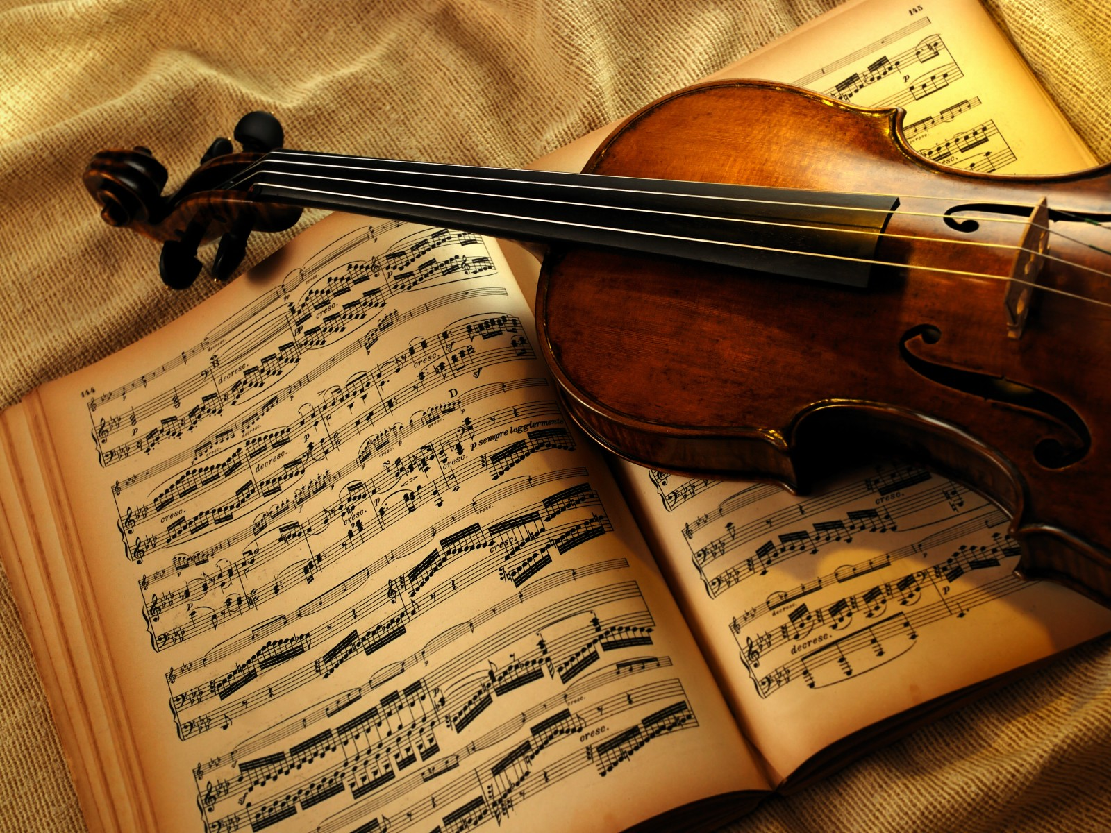 Image result for violin, love