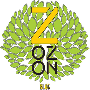 ZOZON blog