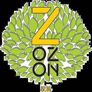 ZOZON blog
