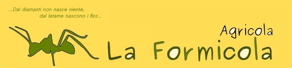 La Formicola
