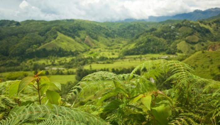منتزه تامان نياجرا ماليزيا rainforest-700x400.j