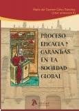 Proceso, eficacia y garantias en la sociedad global