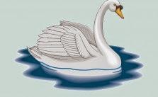 El Cisne y su dueño fabula para niños con moraleja de Esopo
