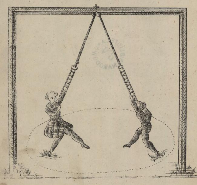 Przewodniku do gimnastyki higijenicznej zastosowany głównie do użytku domowego, Stanisław Majewski, 1874 r.