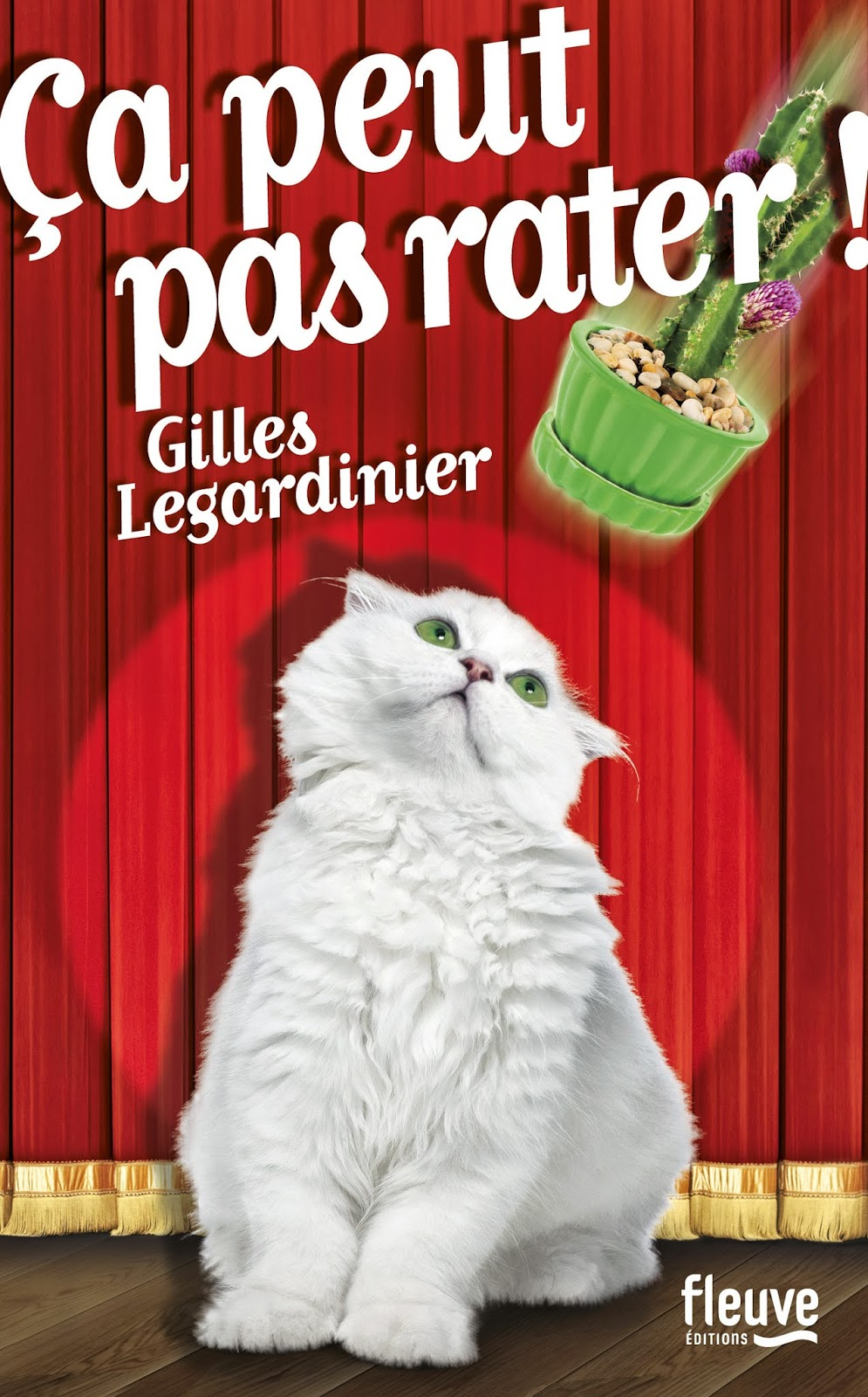 http://leden-des-reves.blogspot.ch/2015/01/ca-peut-pas-rater-gilles-legardinier.html