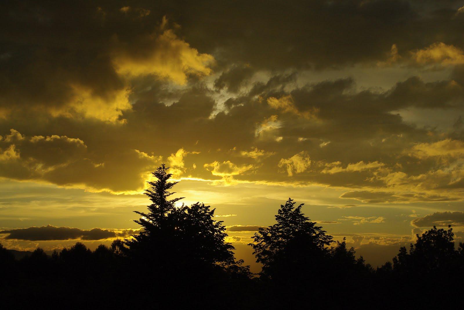 自然公園から夕日を望む