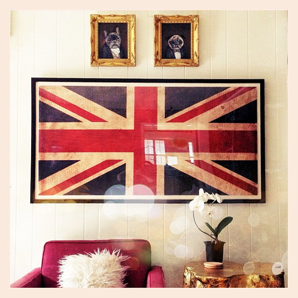 victorian dog portraits, union jack flag print, home decor