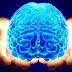 Тархины үйл ажиллагааг шалгах 20 секундын тест