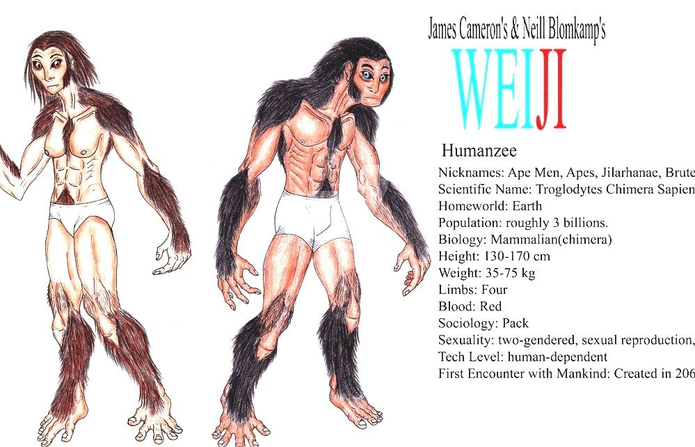 gorilla human sex