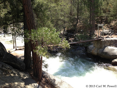 Swinging Bridge, Wawona, Redwoods In Yosemite