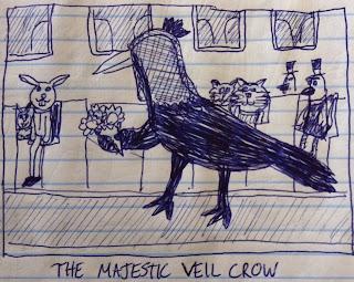 velcro veiled crow rabbits birds in hats